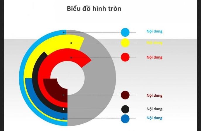 biểu đồ tròn gồm nhiều hình tròn